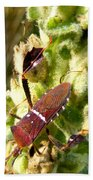 Bug On Stalk Of The Wooly Mullein Beach Towel