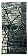 Building Reflection And Tree Beach Towel