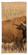 Bull Bison At The  Elk Ranch Grand Teton National Park Beach Towel