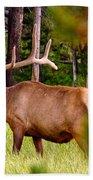 Bull Elk Beach Towel