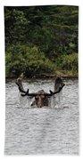 Bull Moose - 3502 Beach Towel