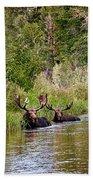 Bull Moose Summertime Spa Beach Towel