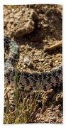 Bull Snake Beach Towel
