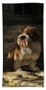 Bulldog In A Doorway Beach Towel