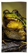 Bullfrog Watching Beach Towel