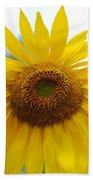 Bumble Bee And Sunflower Beach Towel