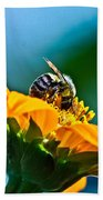 Bumble Bee I Beach Towel