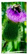 Bumble Bee On Bull Thistle Plant  Beach Towel