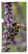 Bumble On Sage Beach Towel