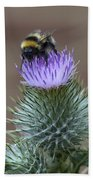 Bumble Thistle Beach Towel