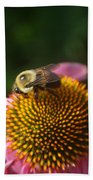 bumblebee and Echinacea Beach Towel
