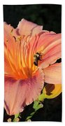 Bumblebee On Daylily Beach Towel