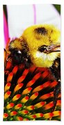Bumblebee On Echinacea  Beach Towel