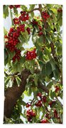 Bumper Crop - Cherries Beach Towel