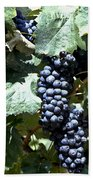 Bunch Of Grapes Beach Towel by Heiko Koehrer-Wagner