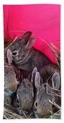 Bunnies In Pink Beach Towel