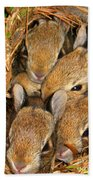 Bunny Babies Beach Towel