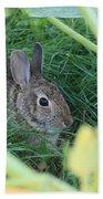 Bunny Rabbit Beach Towel