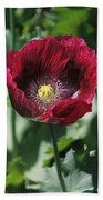 Burgundy Poppy Beach Towel