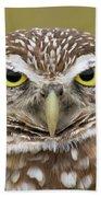 Burrowing Owl, Kaninchenkauz Beach Towel