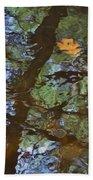 Second  Reflection In Bushkill Falls  Beach Towel