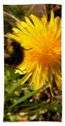 Bussy Bee And Dandelion Beach Towel