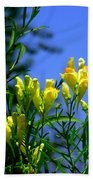 Butter And Egg Wildflower Beach Towel