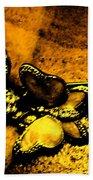 Butterflies 2 Beach Towel
