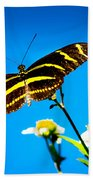 Butterflies And Blue Skies Beach Towel