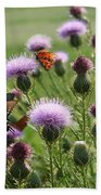 Butterflies And Bull Thistle Wildflowers Beach Towel