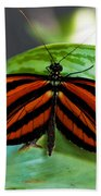 Butterflies Are Free Beach Towel
