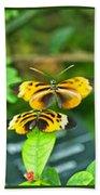 Butterflies Gentle Courtship  3 Panel Composite Beach Towel