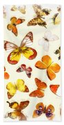 Butterflies Square Beach Towel