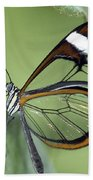 Butterfly 005 Beach Towel