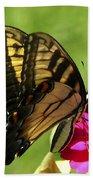 Butterfly 011 Beach Towel