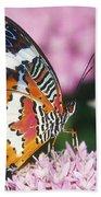 Butterfly 012 Beach Towel
