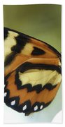 Butterfly 013 Beach Towel