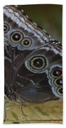 Butterfly 015 Beach Towel