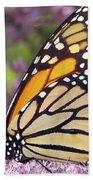 Butterfly 024 Beach Towel