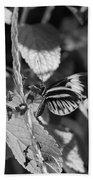 Butterfly 1 Beach Towel