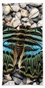 Butterfly Amongst Stones Beach Towel