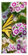 Butterfly And Blooms - Spring Flowers And Tiger Swallowtail Butterfly. Beach Towel
