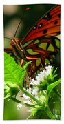 Butterfly Art Beach Towel