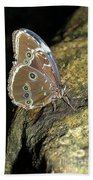 Butterfly At Night Beach Towel