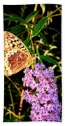 Butterfly Banquet 2 Beach Towel by Will Borden