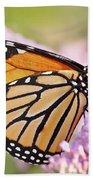 Butterfly Beauty-monarch II  Beach Towel