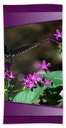 Butterfly Black 16 By 20 Beach Towel