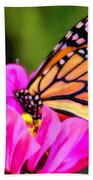 Butterfly Cup Beach Towel