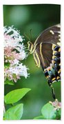Butterfly Dining  Beach Towel