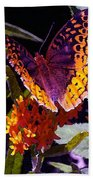Butterfly Don't Fly Away Beach Towel